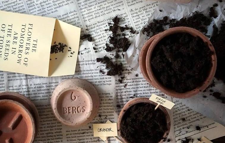 Vilken jord ska man välja till växterna?