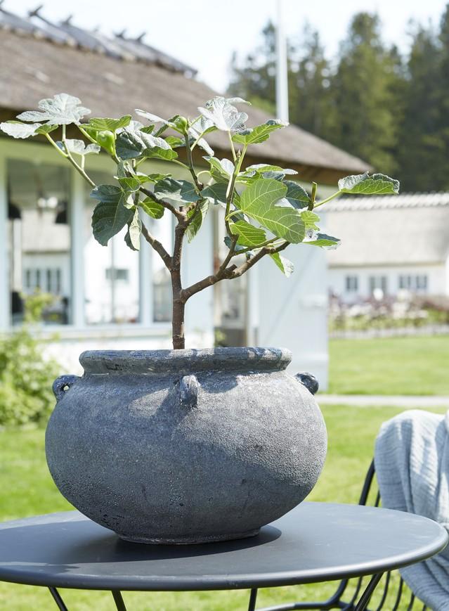 Blomkruka från Wikholm form