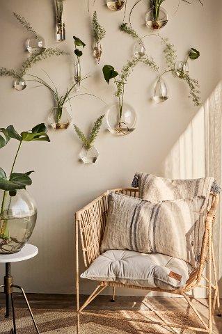 Växtstilleben i glasvaser