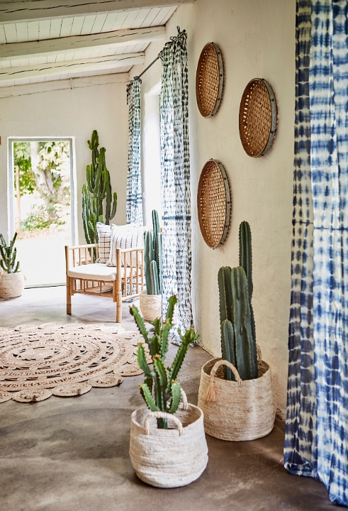Slipp ohyra - välj kaktusar