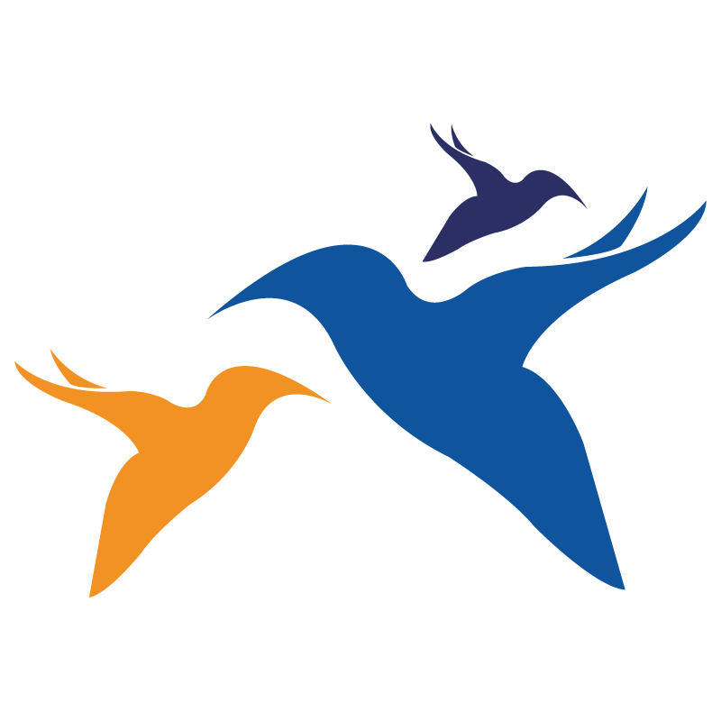 Outsourced Secretarial & Typing services | Bluebird Support Services