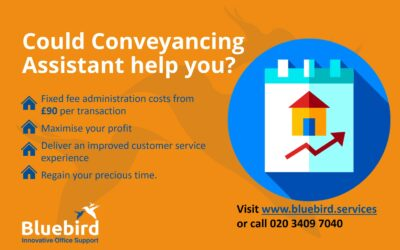 Conveyancing Assistant Service Pricing Structure