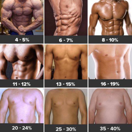 Body Fat For Men