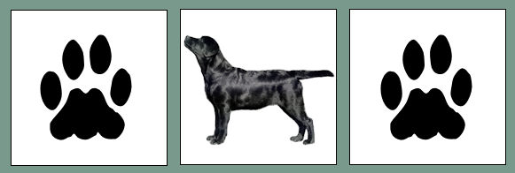 Labradorskylt