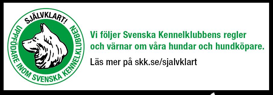 skk-logga