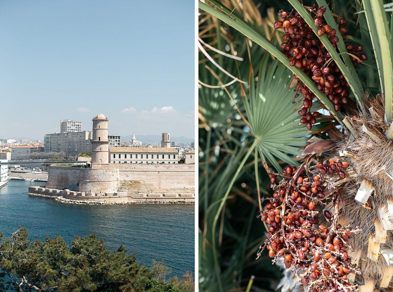Marseille, plus belle la ville 36