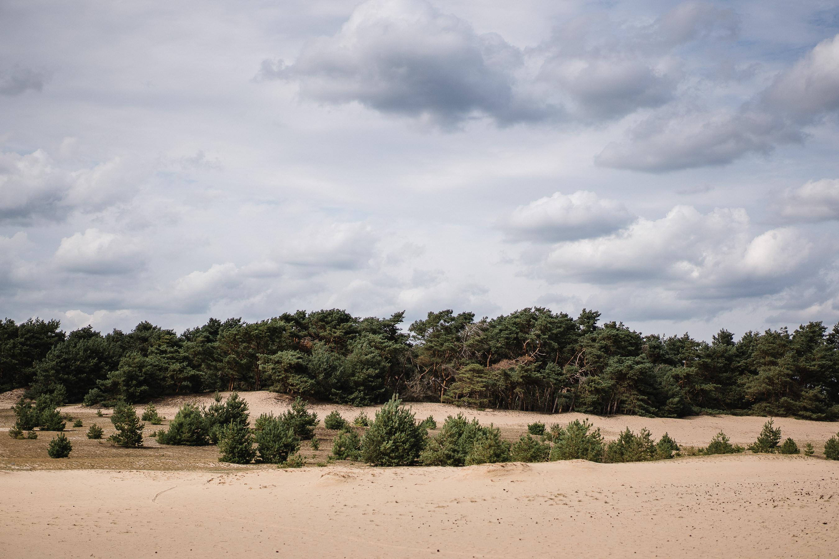 Le sable du Sahara Belge