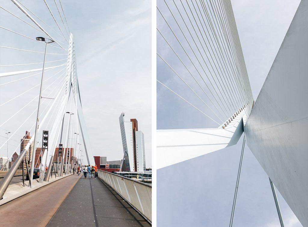 Pont Erasmus Rotterdam
