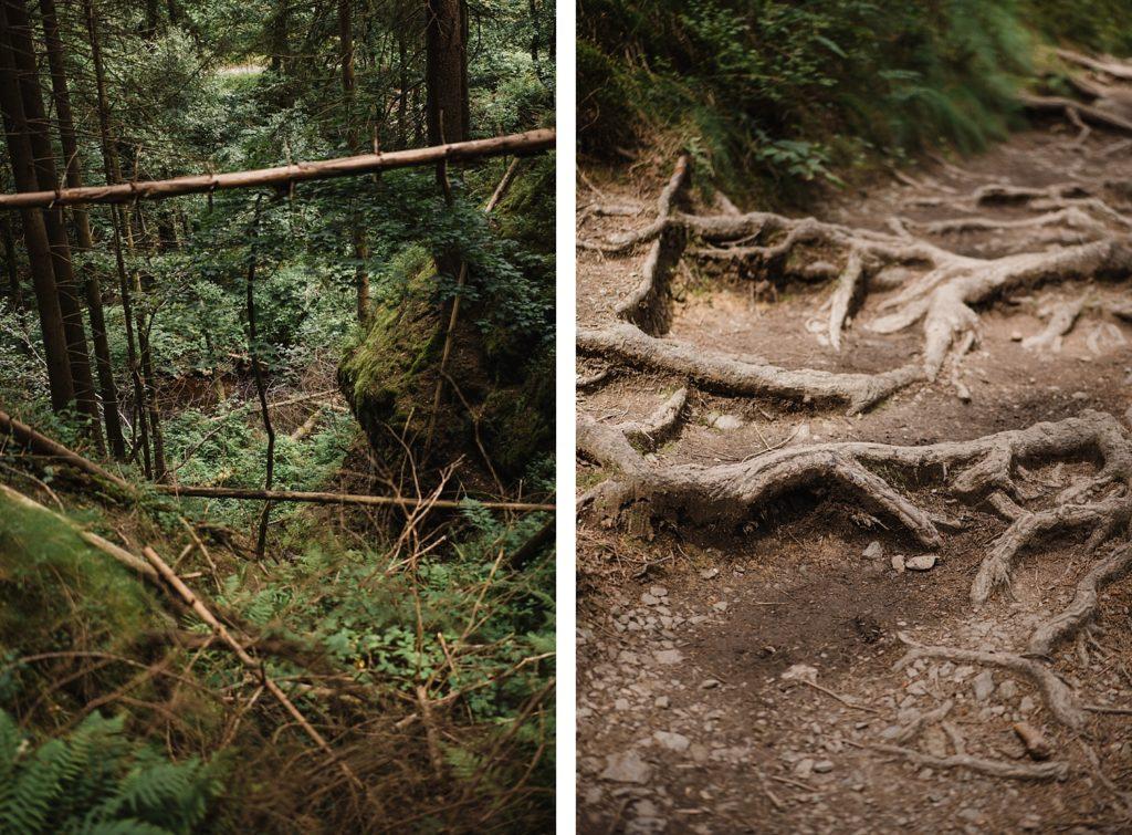 Randonnée de 9km aux Trôs-Marets dans un canyon belge 21