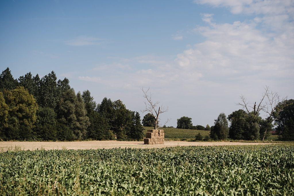Le sentier de l'étrange à Ellezelles avec Totemus 25