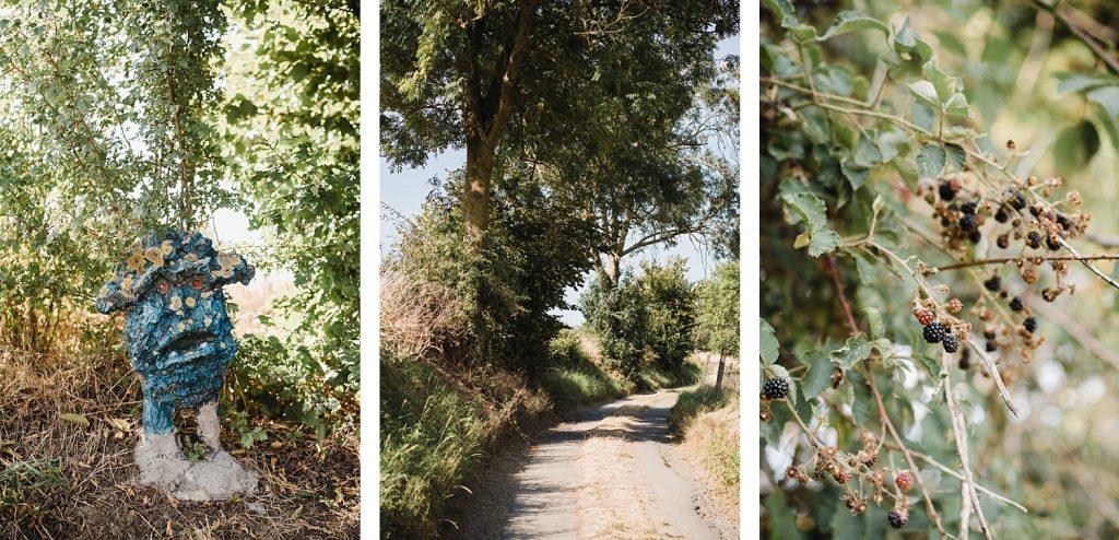 Le sentier de l'étrange à Ellezelles avec Totemus 37