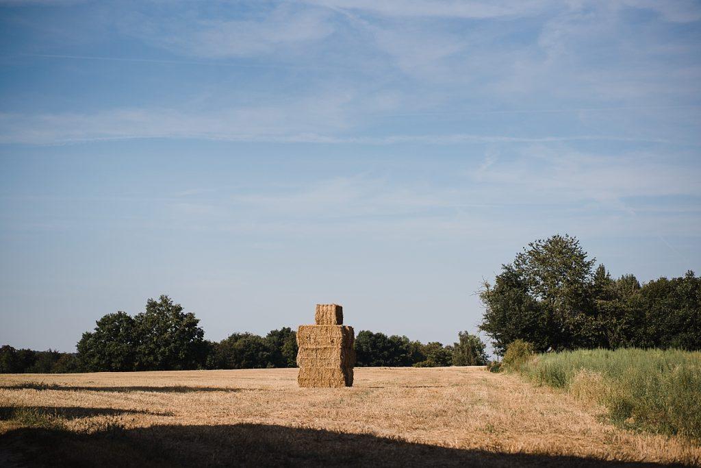 Le sentier de l'étrange à Ellezelles avec Totemus 63