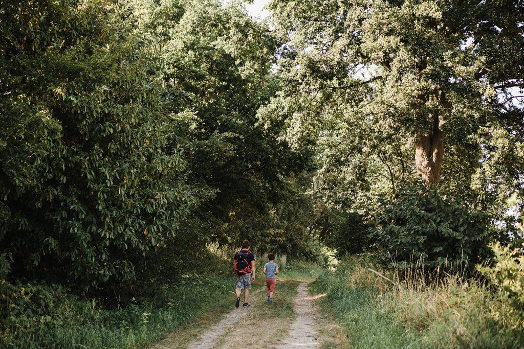 Le sentier de l'étrange à Ellezelles avec Totemus 67