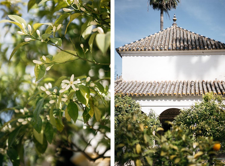 Escapade en amoureux à Séville en Andalousie 69