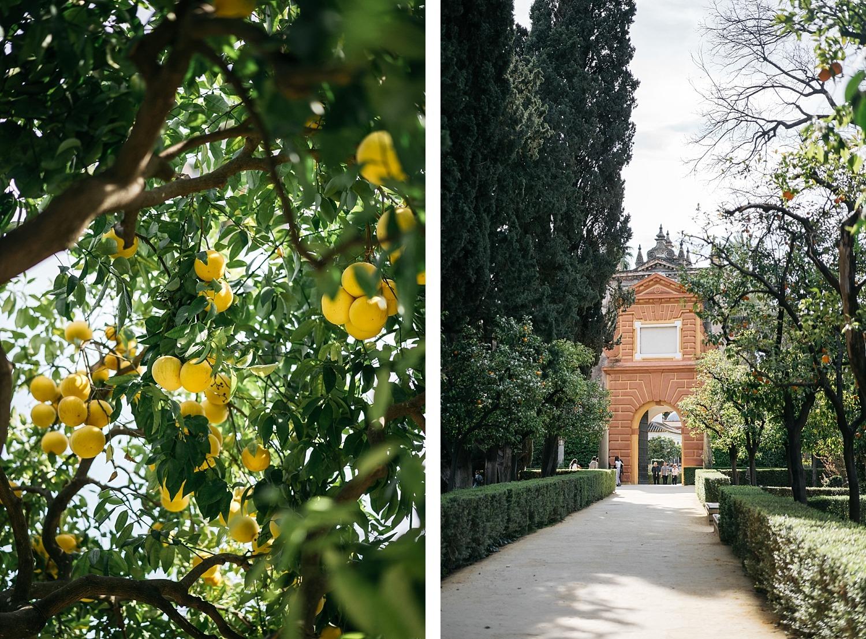 Escapade en amoureux à Séville en Andalousie 74