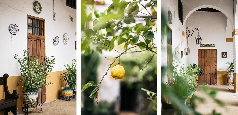 Escapade en amoureux à Séville en Andalousie 8
