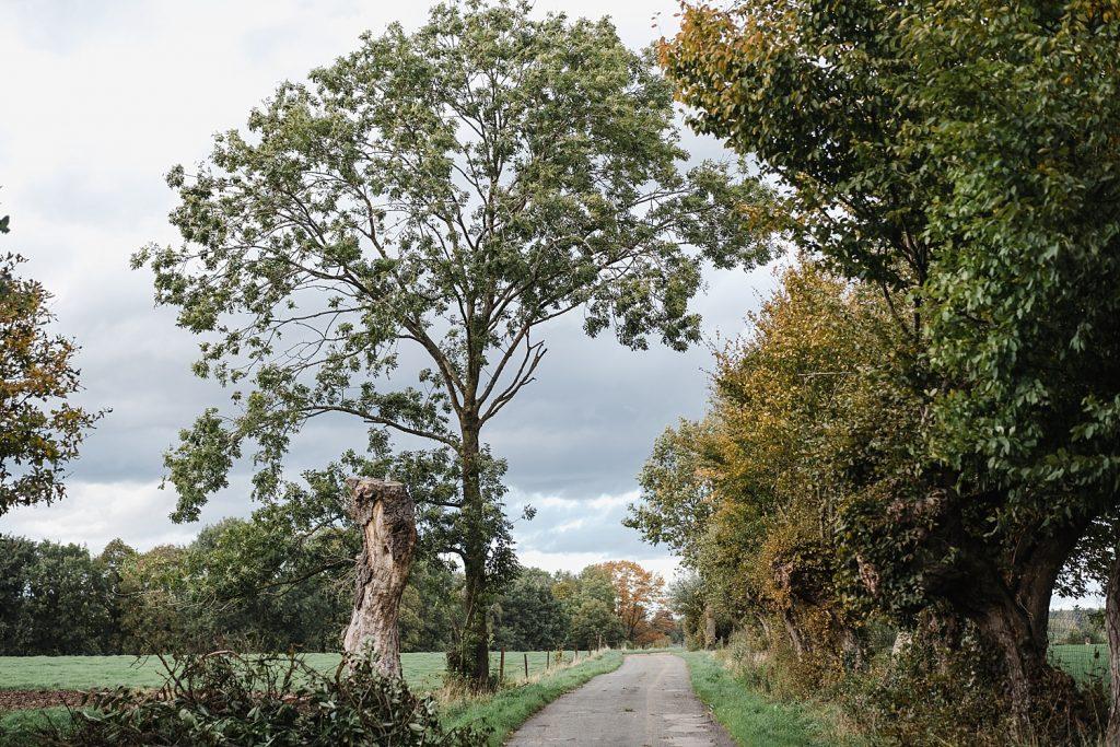 Rando entre nature et Moyen Age à Braine-le-château 18