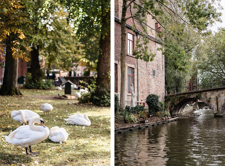 Bruges, 15 raisons de tomber amoureux 88