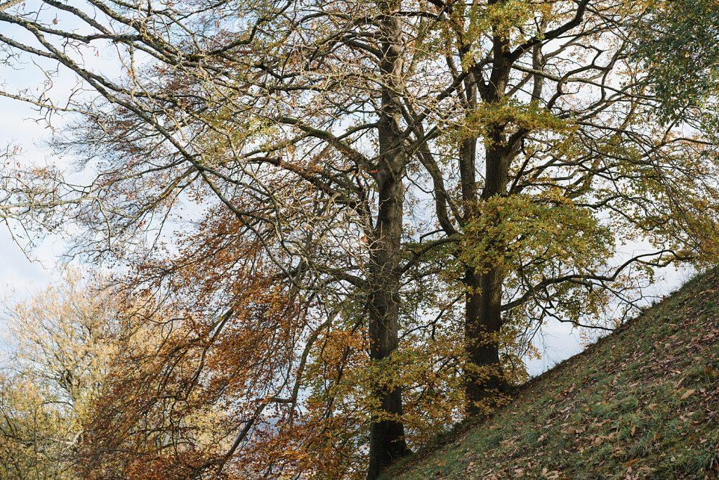 A la découverte de Namur avec Totemus 52