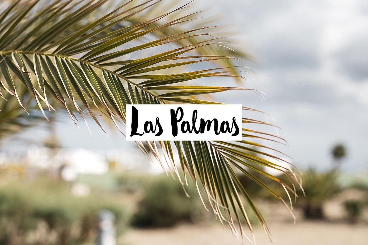Gran Canaria, l'île des grandes aventures 43