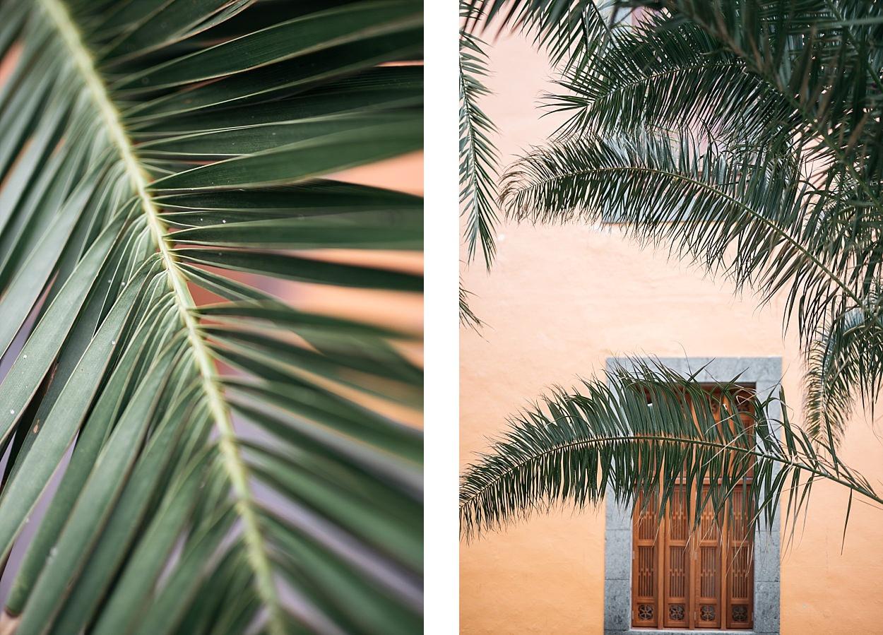 Gran Canaria, l'île des grandes aventures 47