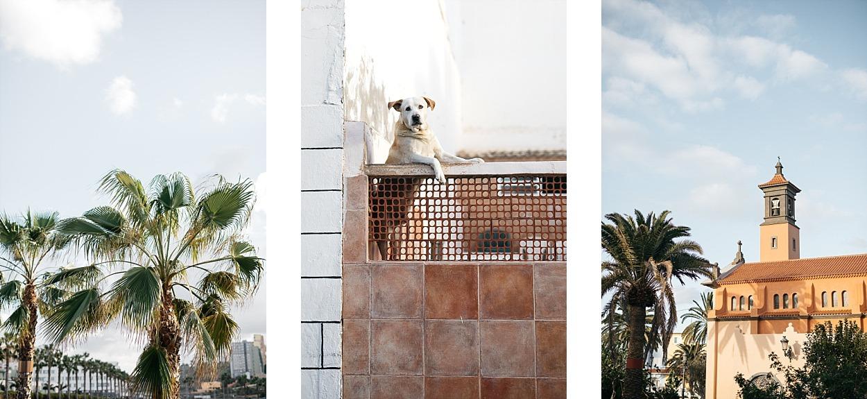 Gran Canaria, l'île des grandes aventures 60