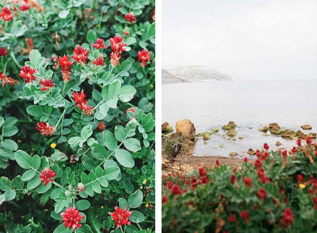 Séjour à Gozo avec Mystery travel 76