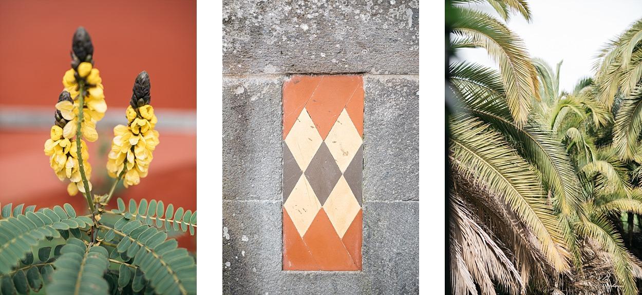 Gran Canaria, l'île des grandes aventures 29