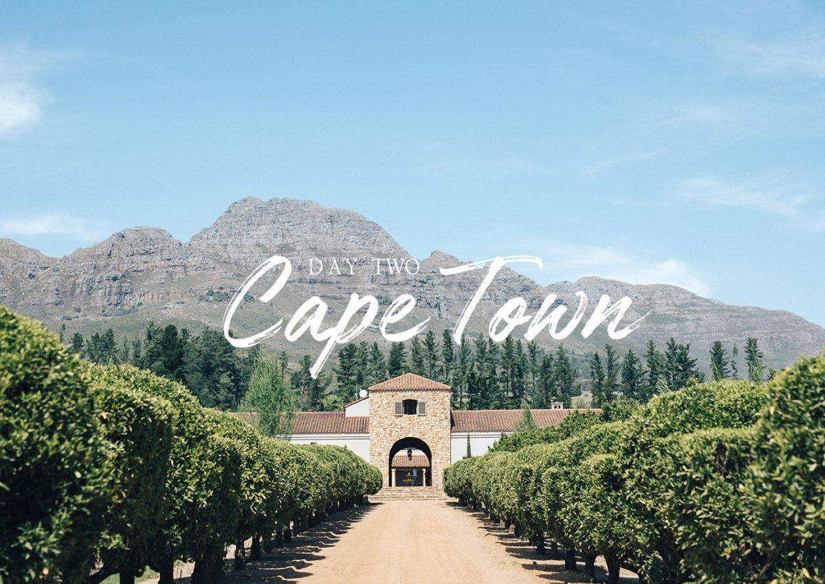 Cape town stellenbosch vignoble afrique du sud