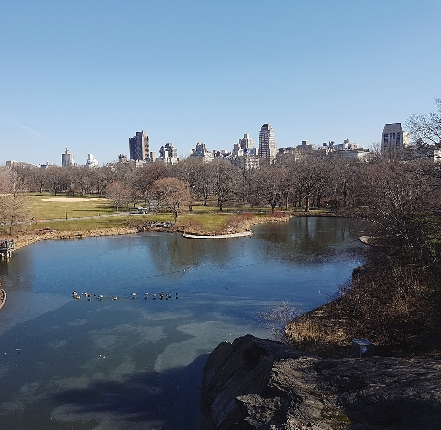 new york nyc Manhattan central park harlem