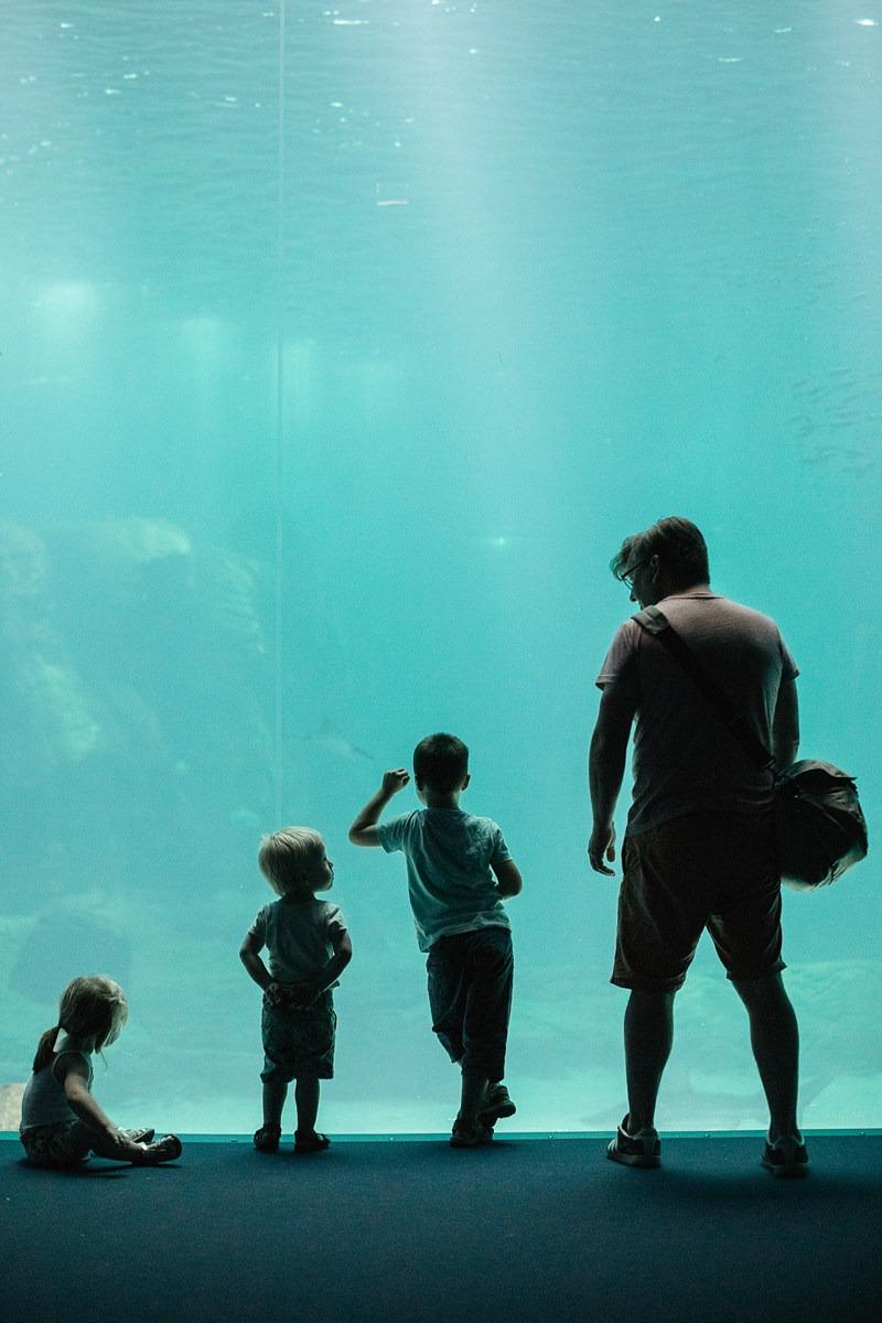 Nausicaa aquarium Boulogne sur mer France