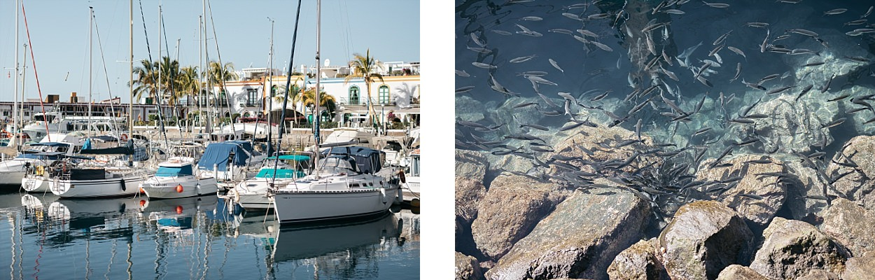 Gran Canaria, l'île des grandes aventures 68