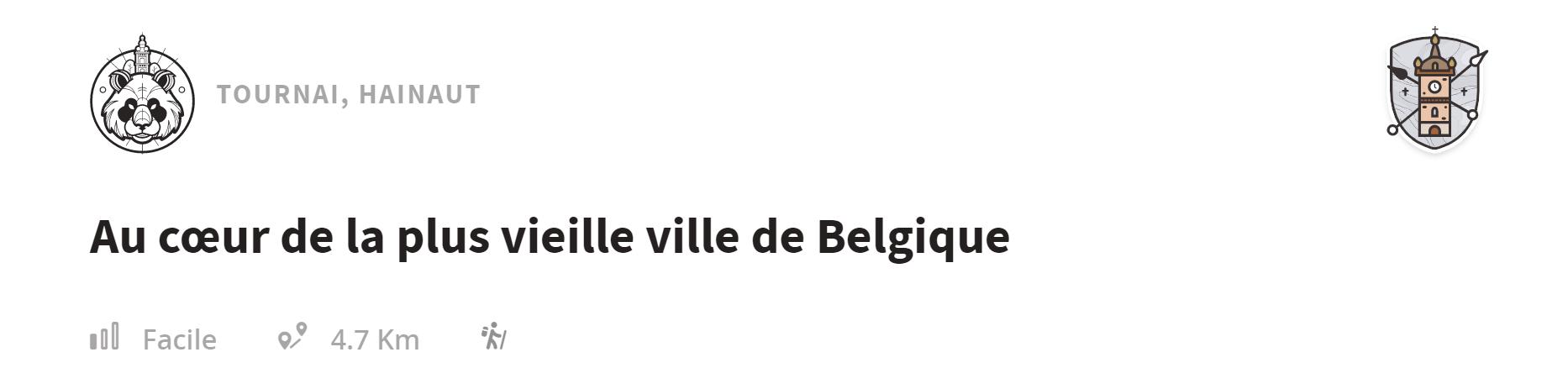 Notre top 10 pour une journée à Tournai 5
