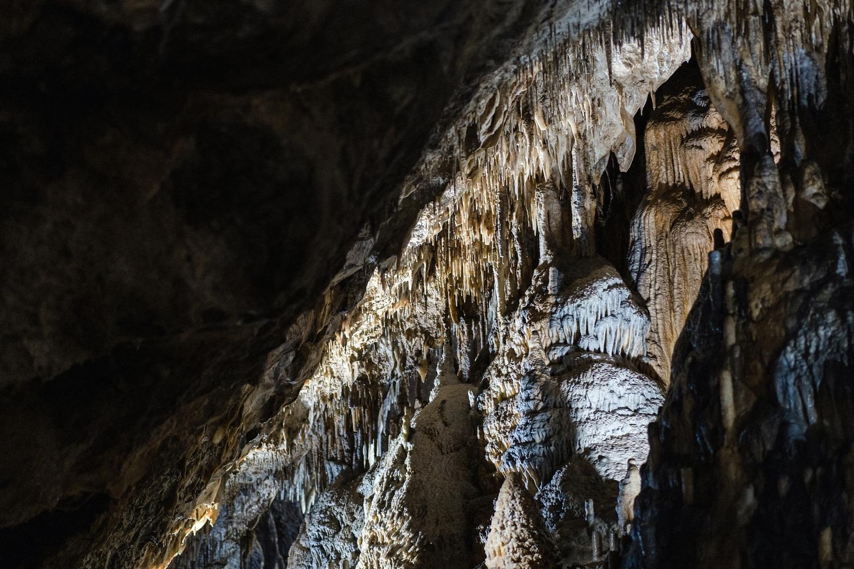 Domaine des grottes de Han Belgique parc animalier excursion famille enfant Province de Namur