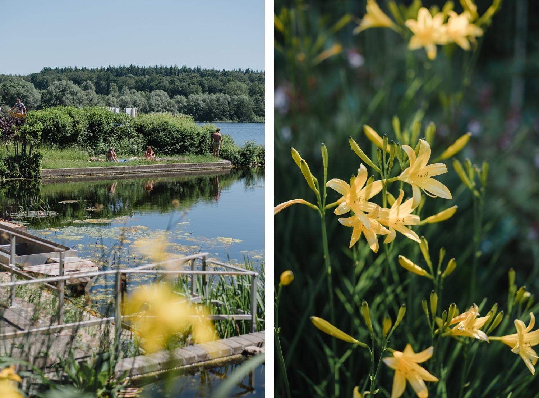 Lac de Bambois Wallonie Province de Namur Belgique Journée en famille