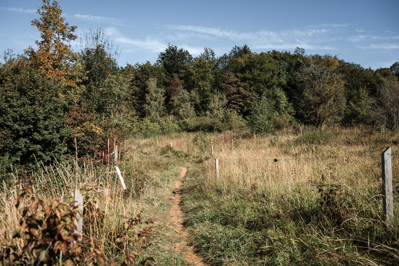 Réserve naturelle Rayond mayne Gaume Torgny promenade Belgique Province Luxembourg