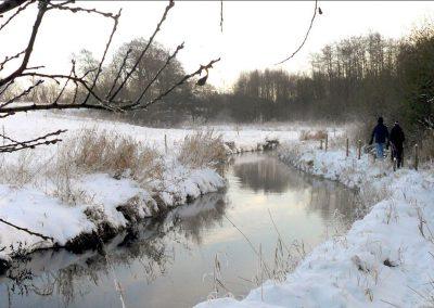 Stille vinterdag ved Binderup Å