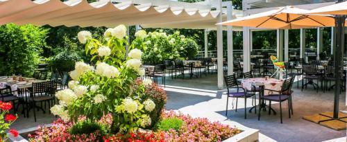 Hotel Slavey terrassen