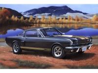 REV07242 Shelby Mustang GT 350 H Plastic Kit