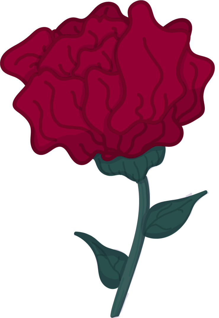 Red Carnation Vector