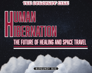 Human Hibernation: The Future of Healing and Space Travel