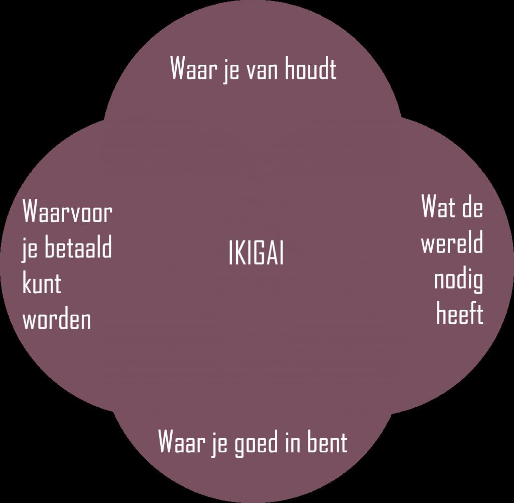 Checklist: in 8 stappen je bedrijf starten: Ikigai
