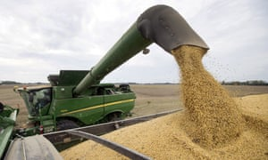 US soybean sales plummeted since Beijing increased the tariff on American imports by 25% in July as part of the trade dispute with Trump.