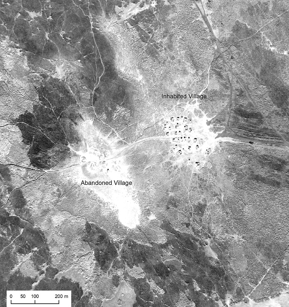 Researchers from the University of Pennsylvania and Harvard University used the images, taken from 70,000 feet (13.2 miles / 21km) above the Earth. An inhabited and adjacent abandoned Marsh Arab village in the Central Marshes of southern Iraq, U2 mission 1554, January 1960