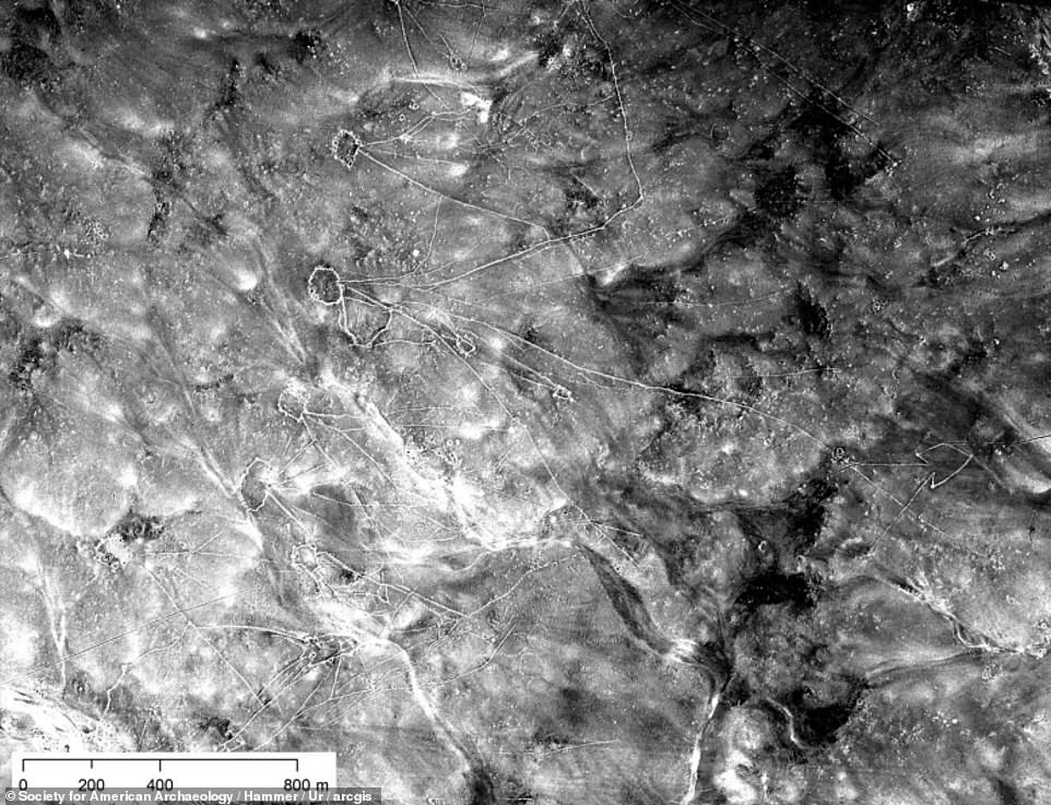 The photographs were taken during a mission code-named CHESS and were declassified in 1997, but weren't digitally scanned or indexed. Chains of desert kites as visible in U2 imagery from missions in 1554 and 1960