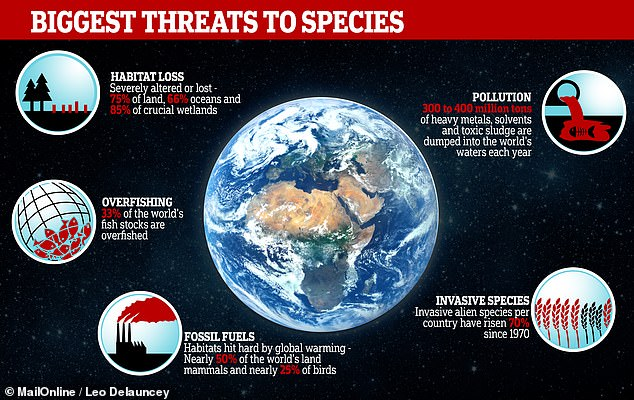 The report's 39-page summary highlighted five ways people are reducing biodiversity. They include habitat loss, overfishing, global warming caused by burning fossil fuels, air and water pollution and invasive species
