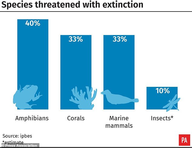 Species are being lost at a rate tens or hundreds of times faster than in the past, the report warns. More than half a million species on land lack sufficient habitat for long-term survival and are likely to go extinct - some within decades - and the oceans are not any better off