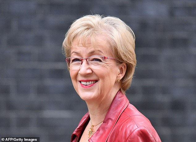 On the defensive: Andrea Leadsom has snubbed Lady Cobham for almost a month