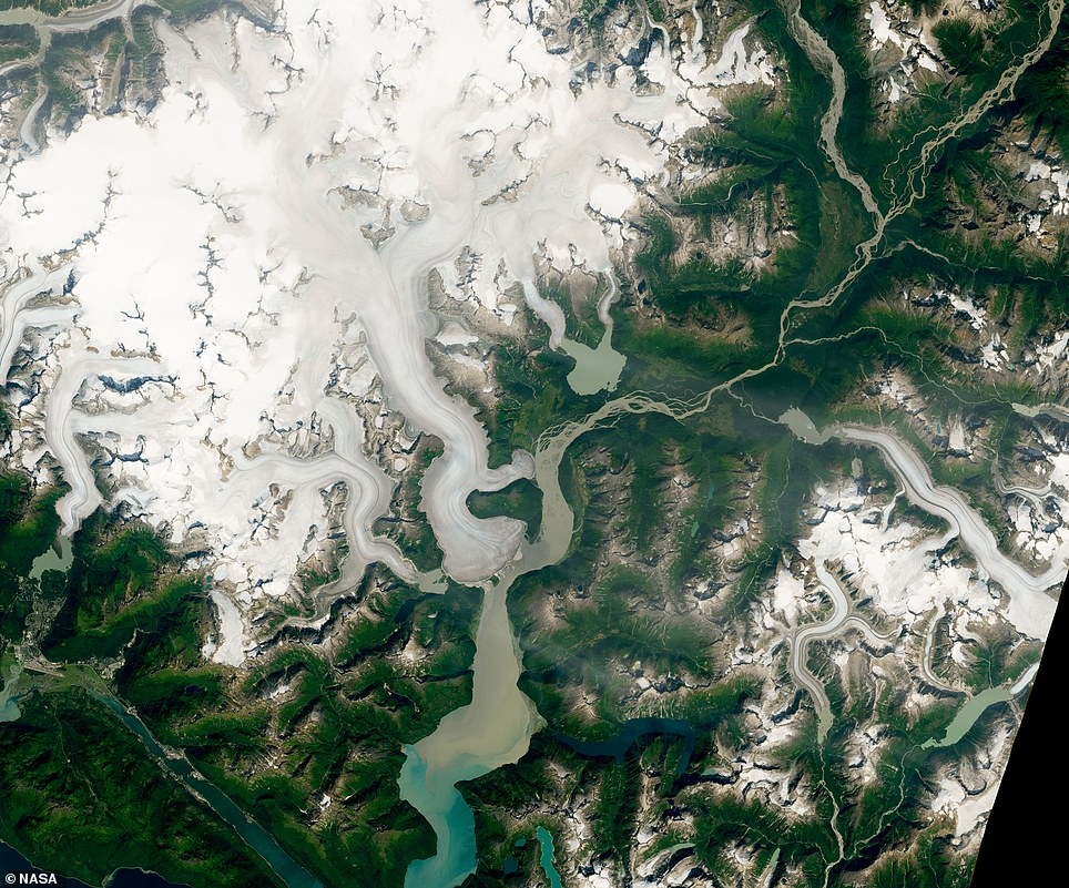 The world's thickest glacier has succumb to the effects of climate change. Pictured is the glacier in 2014, before it started reseeding