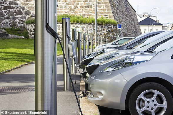 Experts have warned that electric cars produce microscopic particles that are contributing to Britain's air pollution problem. (Stock image)